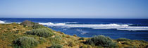 Waves breaking on the beach, Western Australia, Australia von Panoramic Images