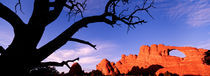 Skyline Arch, Arches National Park, Utah, USA by Panoramic Images