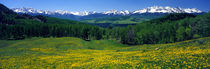 San Miguel Mountains In Spring, Colorado, USA by Panoramic Images