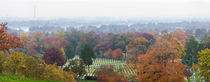 High angle view of a cemetery, Arlington National Cemetery, Washington DC, USA by Panoramic Images