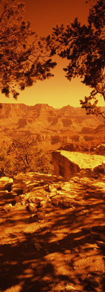 South Rim, Grand Canyon National Park, Arizona, USA by Panoramic Images