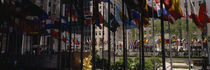 Flags in a row, Rockefeller Plaza, Manhattan, New York City, New York State, USA by Panoramic Images