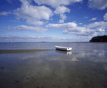 Dinghy on the beach, Auckland, New Zealand von Panoramic Images
