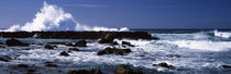 Rock formations at the sea, Three Tables, North Shore, Oahu, Hawaii, USA by Panoramic Images