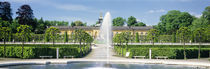 Fountain in a garden, Potsdam, Germany by Panoramic Images