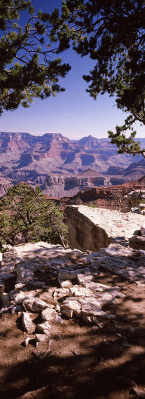 South Rim, Grand Canyon National Park, Arizona, USA von Panoramic Images