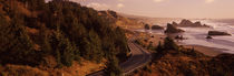 Highway along a coast, Highway 101, Pacific Coastline, Oregon, USA by Panoramic Images