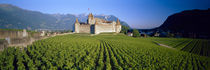 Musee de la Vigne et du Vin, Aigle, Vaud, Switzerland by Panoramic Images