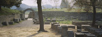 Ancient Olympia, Soft Focus, Olympic Site, Greece by Panoramic Images
