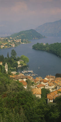 High angle view of houses at the waterfront, Sala Comacina, Lake Como, Italy by Panoramic Images