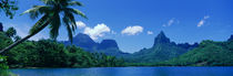 Lush Foliage And Rock Formations, Moorea Island, Tahiti by Panoramic Images