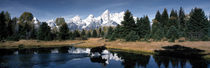 Panorama Print - Moose & Beaver Pond Grand Teton Nationalpark WY USA von Panoramic Images