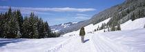 Westendorf, Kitzbuhel, Tyrol, Austria von Panoramic Images