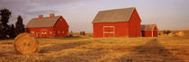 Red barns in a farm, Palouse, Whitman County, Washington State, USA von Panoramic Images