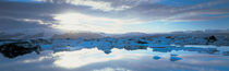 Icebergs in a lake, Jokulsarlon Lagoon, Iceland by Panoramic Images