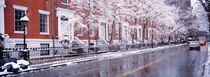 Winter, Snow In Washington Square, NYC, New York City, New York State, USA von Panoramic Images