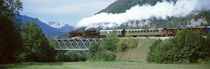 Train on a bridge, Bohinjska Bistrica, Slovenia by Panoramic Images