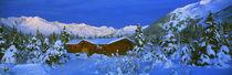Cabin Mount Alyeska, Alaska, USA von Panoramic Images