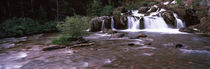 Waterfall in a forest, US Glacier National Park, Montana, USA von Panoramic Images