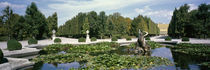 Fountain at a palace, Schonbrunn Palace, Vienna, Austria by Panoramic Images