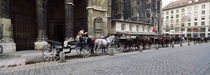 Horsedrawn carriages at a town square, Stephansplatz, Vienna, Austria by Panoramic Images