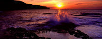Wave Breaking On Rocks, Bempton, Yorkshire, England, United Kingdom by Panoramic Images