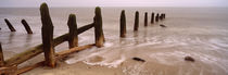 Posts On The Beach, Spurn, Yorkshire, England, United Kingdom von Panoramic Images