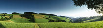 Panoramic view of a landscape, St Margen, Schwarzwald, Germany von Panoramic Images