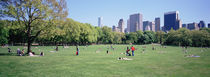 Central Park, NYC, New York City, New York State, USA by Panoramic Images