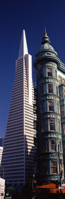 Transamerica Pyramid, San Francisco, California, USA von Panoramic Images