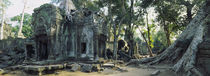 Old ruins of a building, Angkor Wat, Cambodia von Panoramic Images