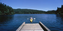 Rear view of a man on a kayak in a river, Orcas Island, Washington State, USA by Panoramic Images
