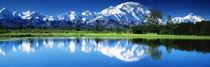 Panorama Print - Denali Nationalpark AK USA von Panoramic Images