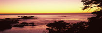 Carmel, Monterey County, California, USA by Panoramic Images