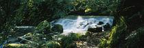 Panorama Print - Wasserfall im Wald, Birks O 'Aberfeldy, Perthshire, Schottland von Panoramic Images