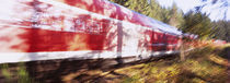 Red commuter train passing through a forest, Baden-Wurttemberg, Germany by Panoramic Images