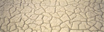 Dried Mud Death Valley CA USA von Panoramic Images