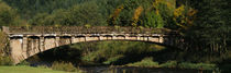 Bridge in a forest, Schwarzwald, Germany von Panoramic Images