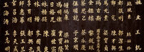 Close-up of Chinese ideograms, Beijing, China by Panoramic Images