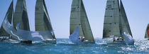 Sailboat racing in the ocean, Key West, Florida, USA von Panoramic Images