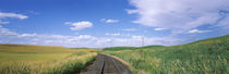 Railroad track passing through a field, Whitman County, Washington State, USA by Panoramic Images