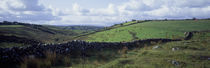 Stone wall on a landscape, Republic of Ireland by Panoramic Images
