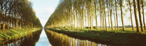 Belgium, tree lined waterway through countryside by Panoramic Images
