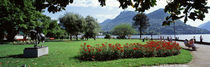 Park near Lake Lugano bkgrd MT Monte Bre canton Ticino Switzerland by Panoramic Images