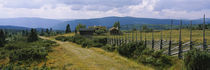 Farmhouses in a field, Gudbrandsdalen, Oppland, Norway by Panoramic Images
