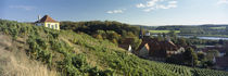 Diesbar-Seublitz, Sachsen, Germany by Panoramic Images