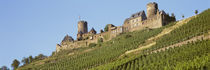 Low Angle View Of A Castle, Burg Thurant, Germany von Panoramic Images