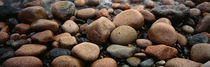 Rocks Acadia National Park ME USA by Panoramic Images