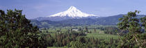 Mt Hood, Oregon, USA by Panoramic Images