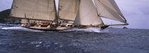 Sailboat in the sea, Schooner, Antigua, Antigua and Barbuda von Panoramic Images